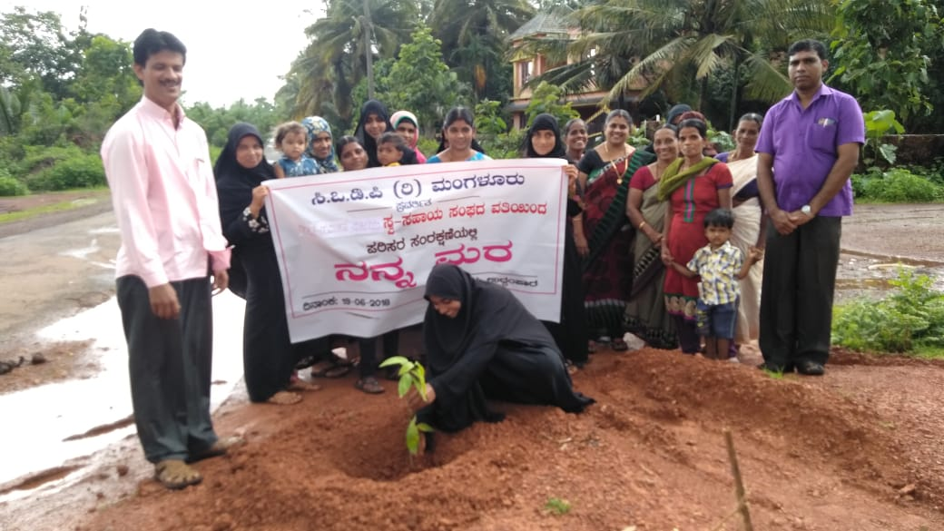 <b>Save Nature - Plant a tree now!!</b>